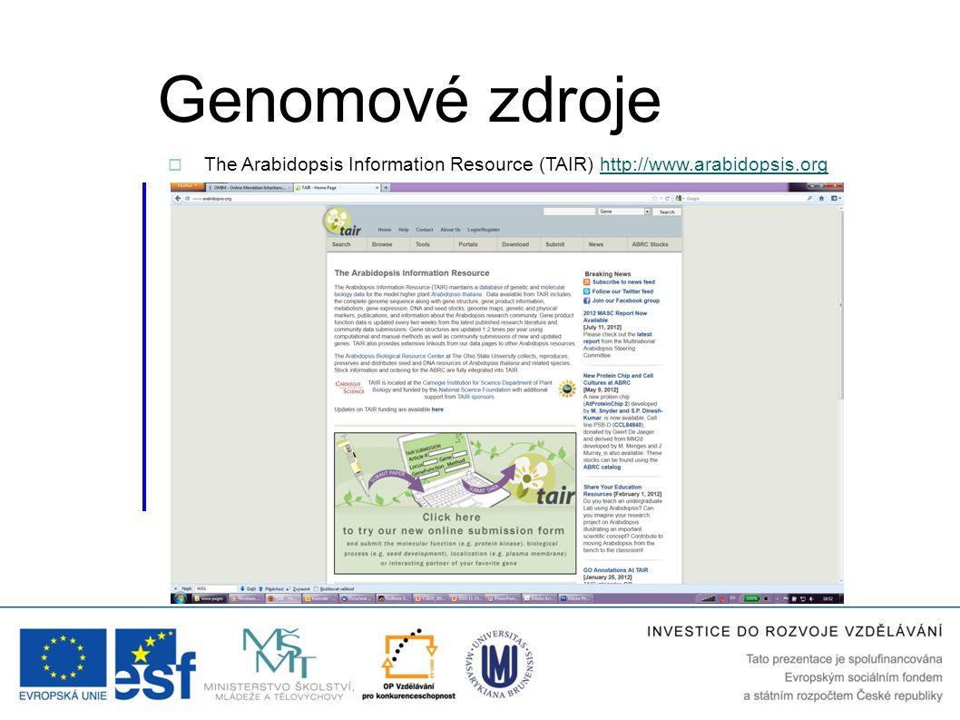 Genomové zdroje  The Arabidopsis Information Resource (TAIR) http://www.arabidopsis.orghttp://www.arabidopsis.org