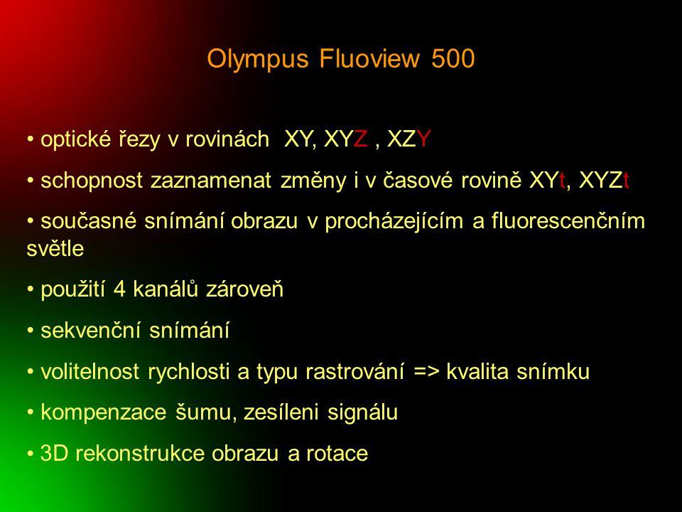 Olympus Fluoview 500 optické řezy v rovinách XY, XYZ, XZY schopnost zaznamenat změny i v časové rovině XYt, XYZt současné snímání obrazu v procházejíc