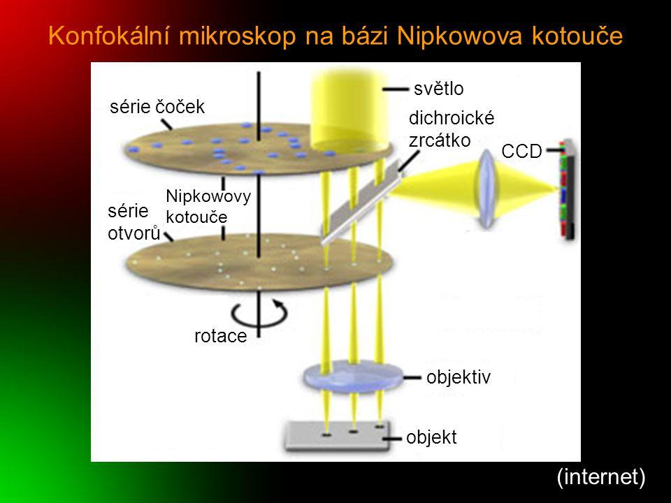 Konfokální mikroskop na bázi Nipkowova kotouče (internet) série čoček série otvorů rotace Nipkowovy kotouče světlo dichroické zrcátko CCD objektiv obj