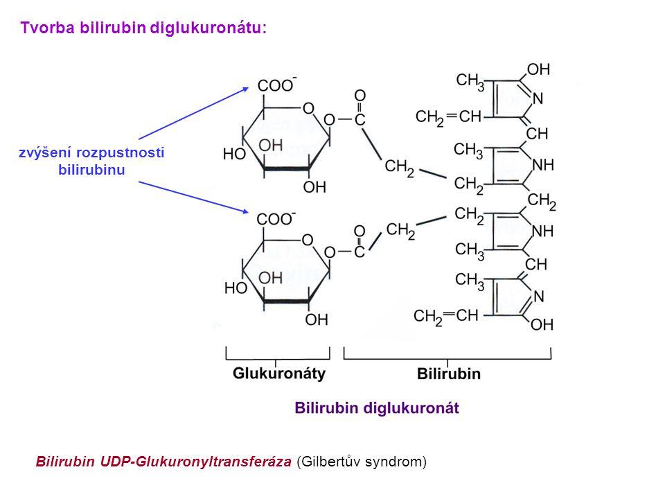 Tvorba bilirubin diglukuronátu: zvýšení rozpustnosti bilirubinu Bilirubin UDP-Glukuronyltransferáza (Gilbertův syndrom)