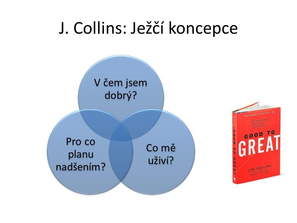 Struktura projektu 1.Jaká firma/organizace.