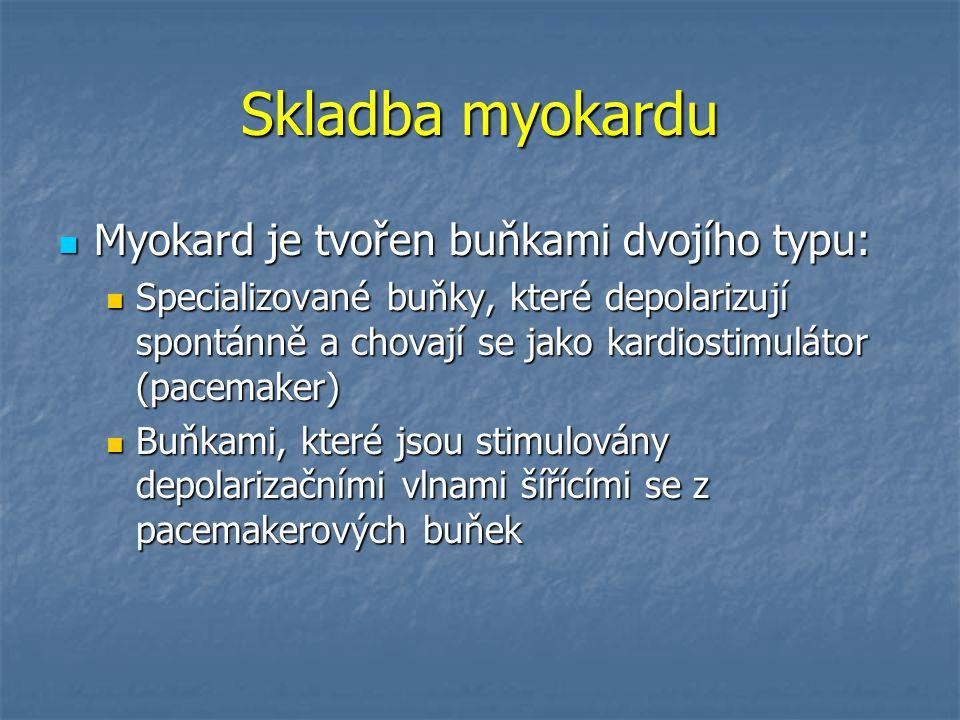 Skladba myokardu Myokard je tvořen buňkami dvojího typu: Myokard je tvořen buňkami dvojího typu: Specializované buňky, které depolarizují spontánně a