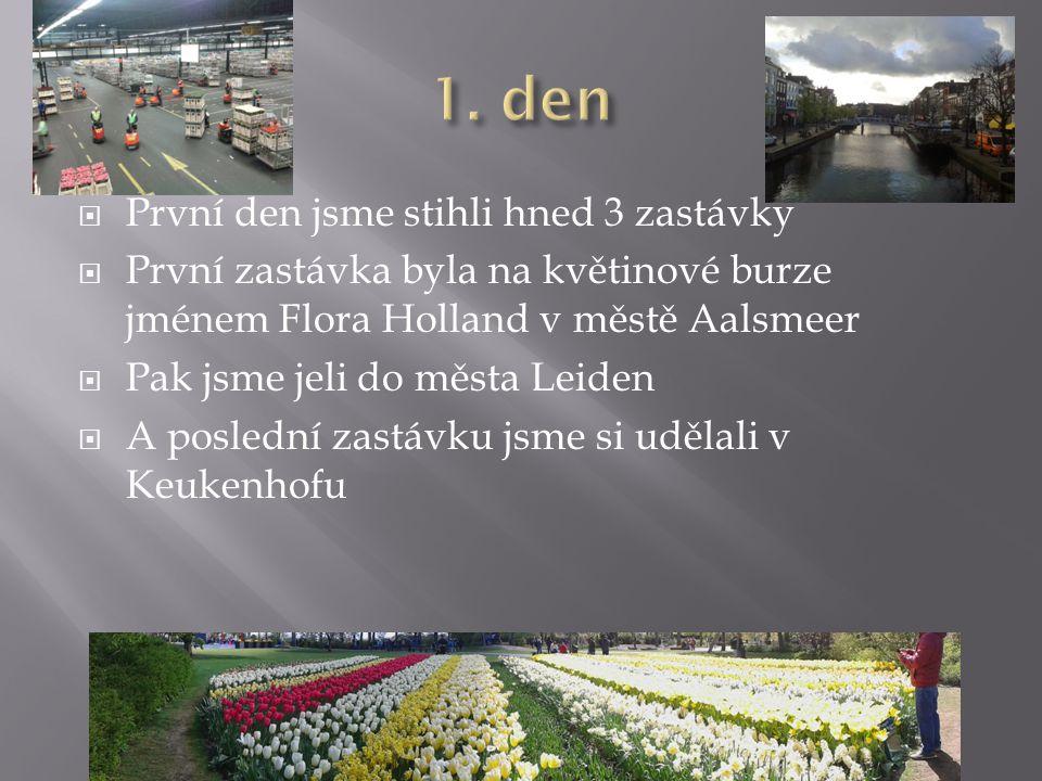  První den jsme stihli hned 3 zastávky  První zastávka byla na květinové burze jménem Flora Holland v městě Aalsmeer  Pak jsme jeli do města Leiden  A poslední zastávku jsme si udělali v Keukenhofu