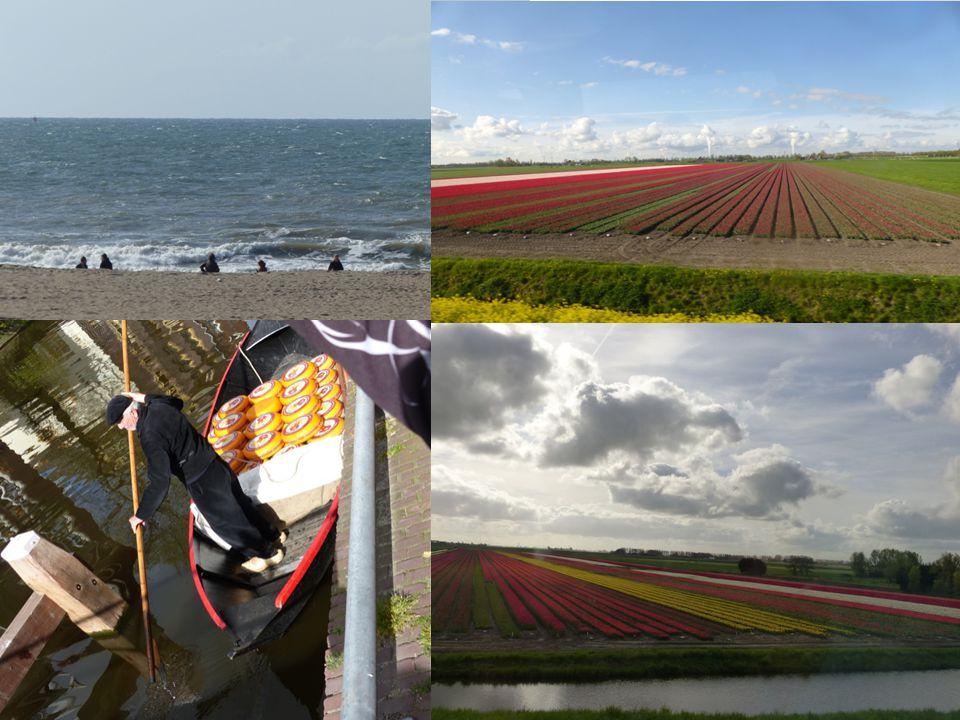 V Holandsku se mi celkově moc líbilo.Je tam moc památek a míst, kam se můžete jít podívat.