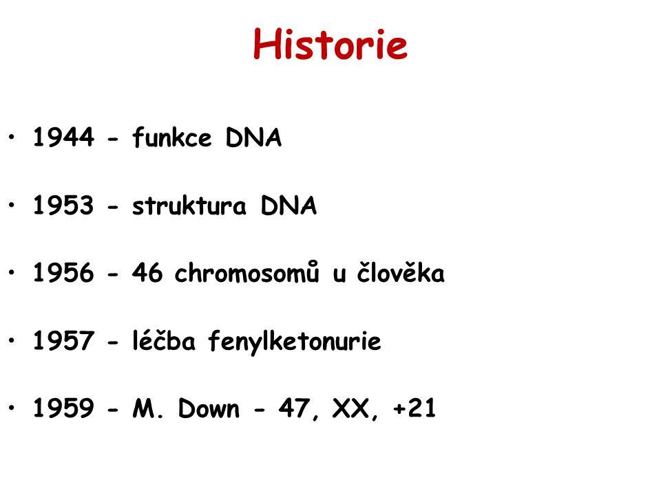 Historie 1944 - funkce DNA 1953 - struktura DNA 1956 - 46 chromosomů u člověka 1957 - léčba fenylketonurie 1959 - M. Down - 47, XX, +21