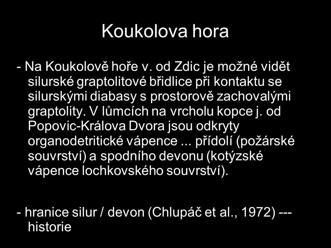 Koukolova hora - Na Koukolově hoře v. od Zdic je možné vidět silurské graptolitové břidlice při kontaktu se silurskými diabasy s prostorově zachovalým
