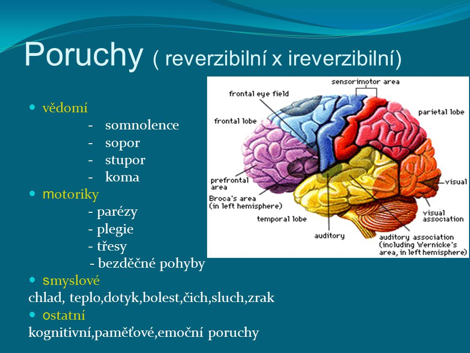 Poruchy ( reverzibilní x ireverzibilní) vědomí - somnolence - sopor - stupor - koma m otoriky - parézy - plegie - třesy - bezděčné pohyby s myslové ch