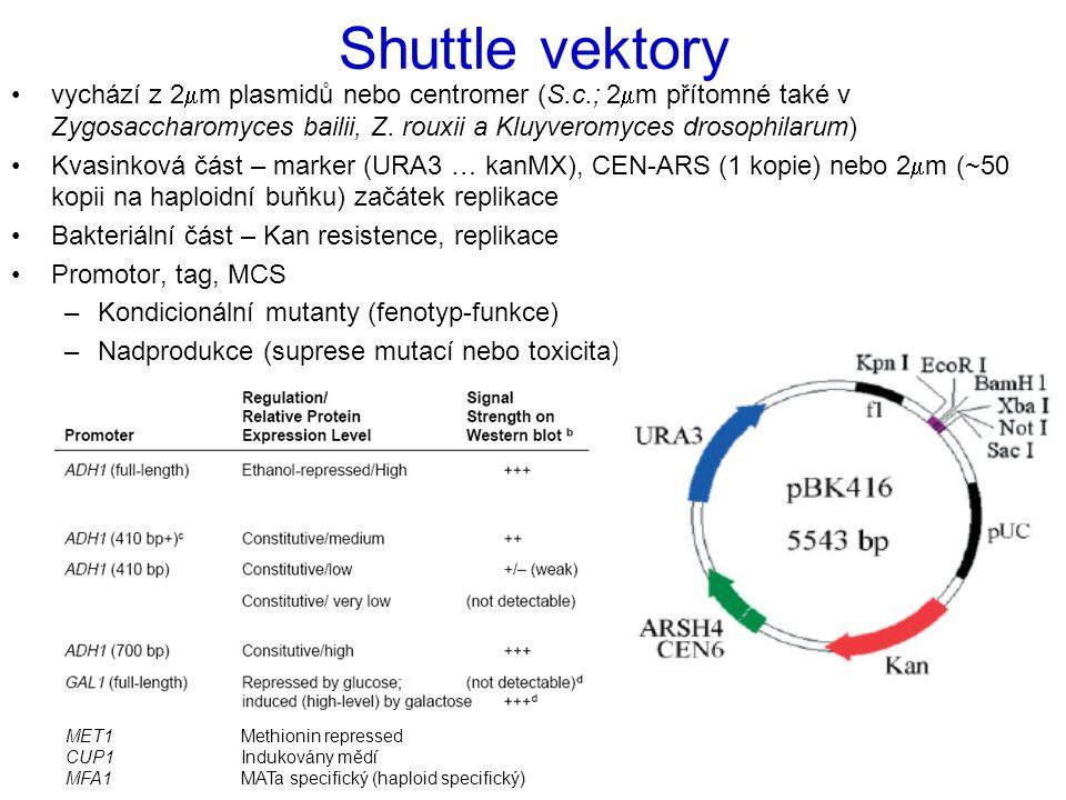 Shuttle vektory vychází z 2  m plasmidů nebo centromer (S.c.; 2  m přítomné také v Zygosaccharomyces bailii, Z. rouxii a Kluyveromyces drosophilarum