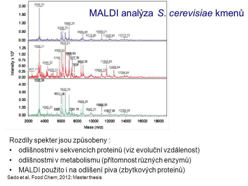Sedo et al, Food Chem, 2012; Master thesis MALDI analýza S. cerevisiae kmenů Rozdíly spekter jsou způsobeny : odlišnostmi v sekvencích proteinů (viz e