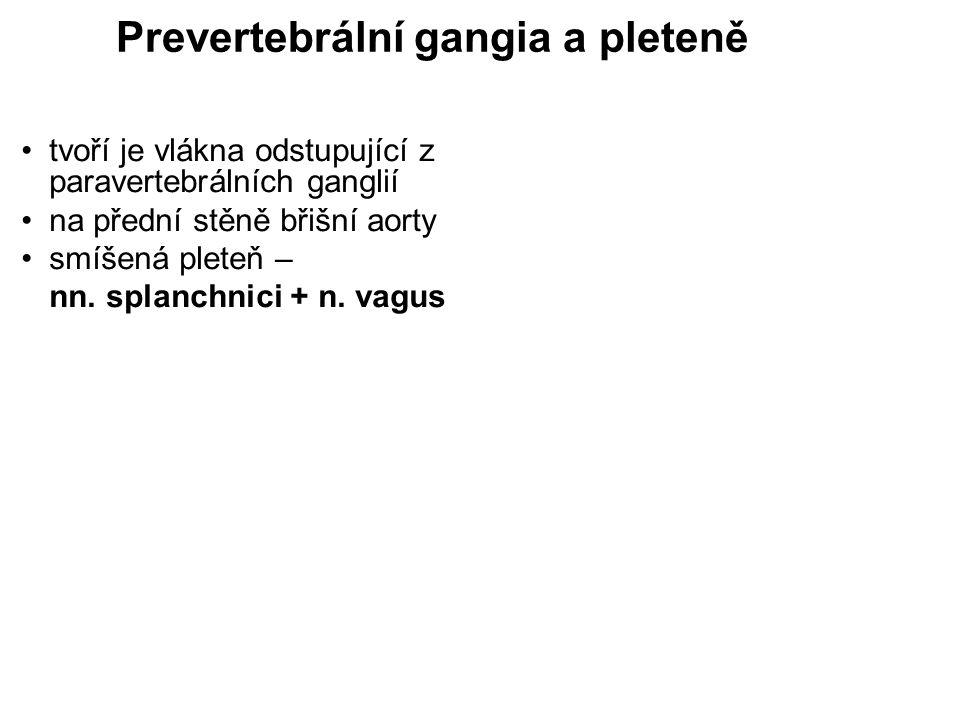 Prevertebrální gangia a pleteně tvoří je vlákna odstupující z paravertebrálních ganglií na přední stěně břišní aorty smíšená pleteň – nn. splanchnici
