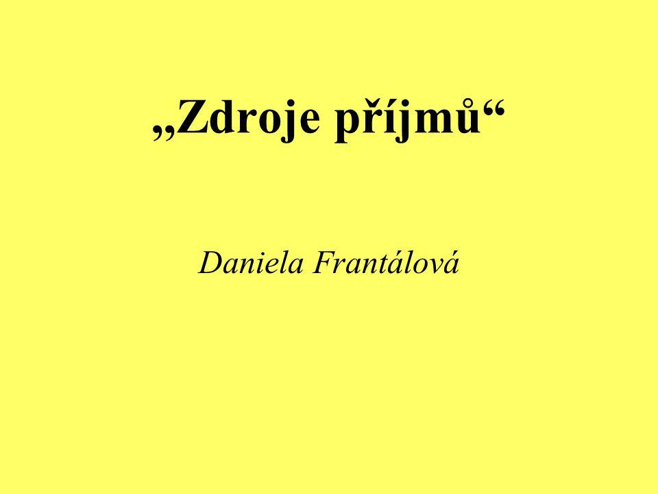 """,,Zdroje příjmů"""" Daniela Frantálová"""