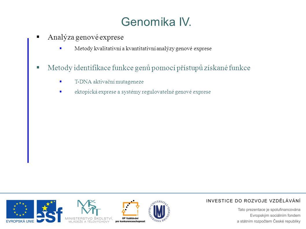 Genomika IV.  Metody identifikace funkce genů pomocí přístupů získané funkce  T-DNA aktivační mutageneze  ektopická exprese a systémy regulovatelné