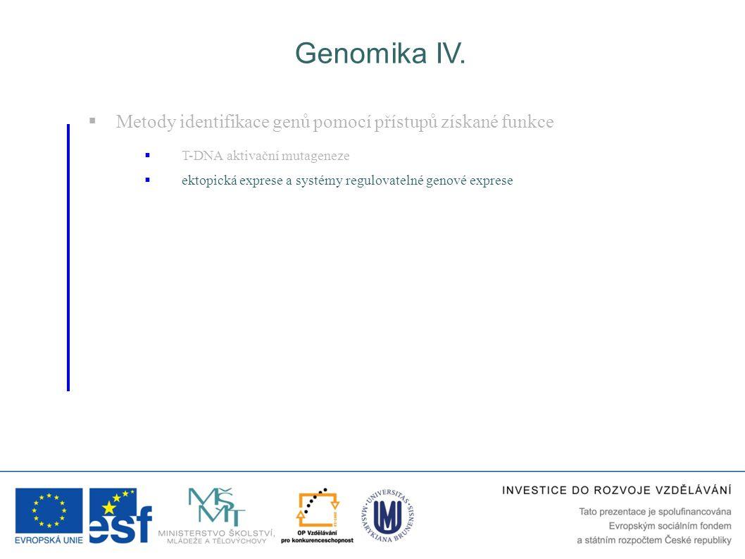 Genomika IV.  Metody identifikace genů pomocí přístupů získané funkce  T-DNA aktivační mutageneze  ektopická exprese a systémy regulovatelné genové