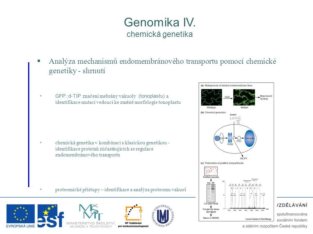 Genomika IV. chemická genetika  Analýza mechanismů endomembránového transportu pomocí chemické genetiky - shrnutí  GFP::d-TIP značení mebrány vakuol