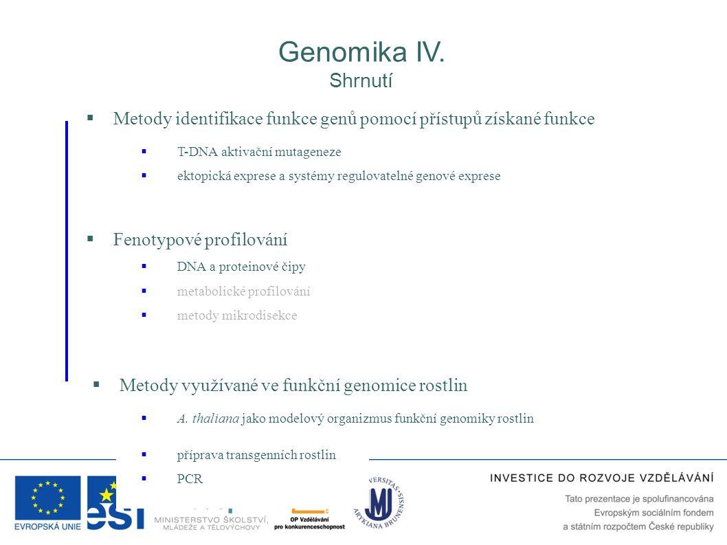  Fenotypové profilování  metabolické profilování  DNA a proteinové čipy  Metody identifikace funkce genů pomocí přístupů získané funkce  T-DNA ak