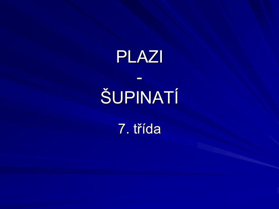 PLAZI - ŠUPINATÍ 7. třída
