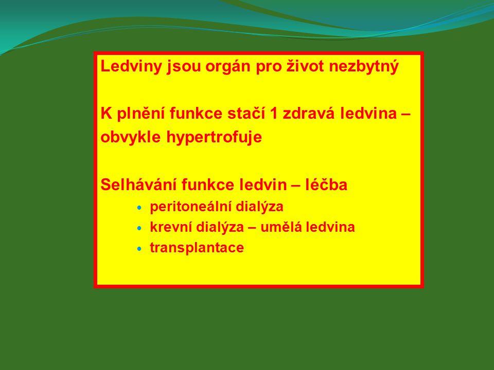 Ledviny jsou orgán pro život nezbytný K plnění funkce stačí 1 zdravá ledvina – obvykle hypertrofuje Selhávání funkce ledvin – léčba peritoneální dialýza krevní dialýza – umělá ledvina transplantace