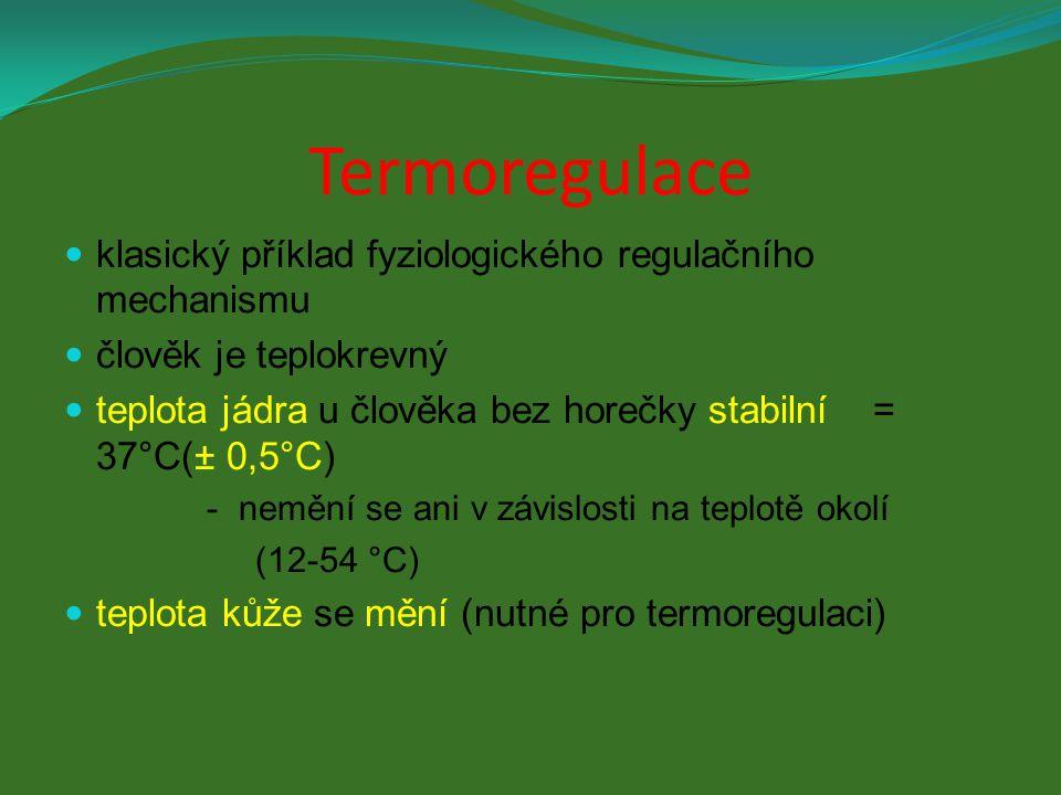 Termoregulace klasický příklad fyziologického regulačního mechanismu člověk je teplokrevný teplota jádra u člověka bez horečky stabilní = 37°C(± 0,5°C