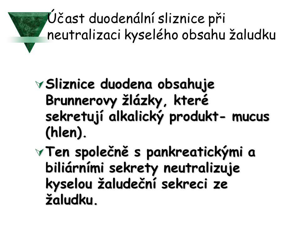 Účast duodenální sliznice při neutralizaci kyselého obsahu žaludku  Sliznice duodena obsahuje Brunnerovy žlázky, které sekretují alkalický produkt- mucus (hlen).