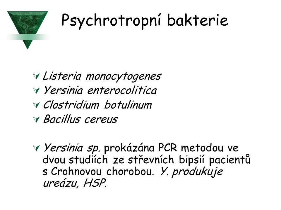 Psychrotropní bakterie  Listeria monocytogenes  Yersinia enterocolitica  Clostridium botulinum  Bacillus cereus  Yersinia sp. prokázána PCR metod