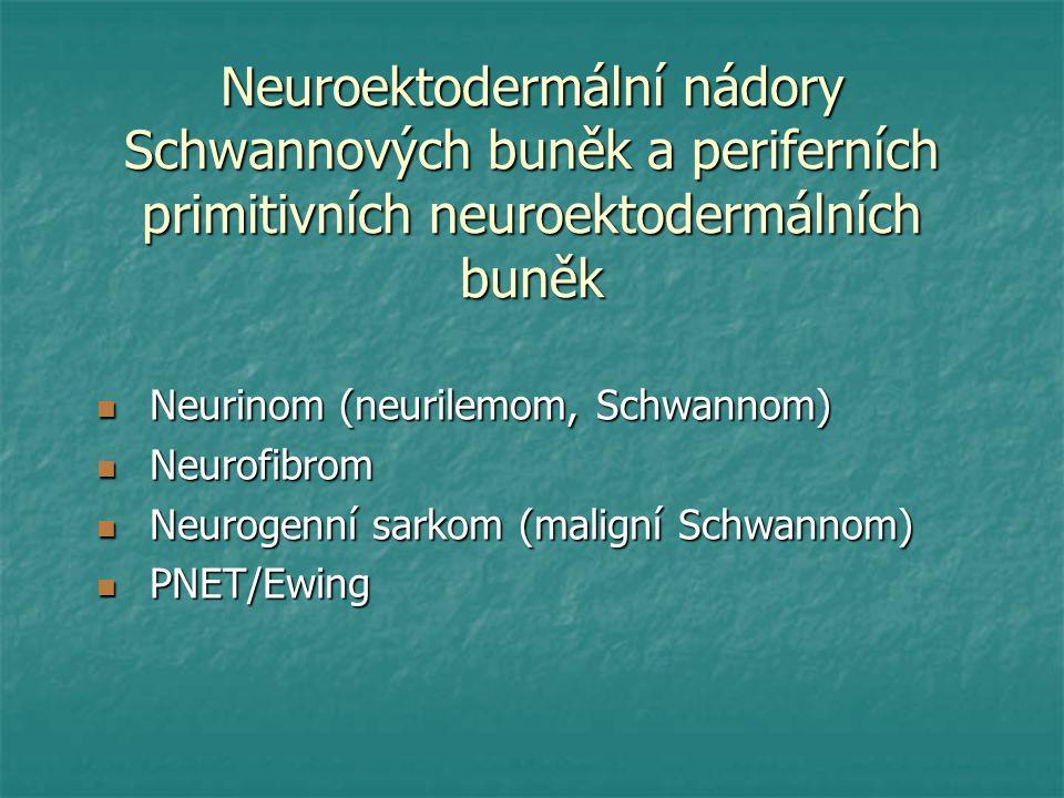 Neuroektodermální nádory Schwannových buněk a periferních primitivních neuroektodermálních buněk Neurinom (neurilemom, Schwannom) Neurinom (neurilemom