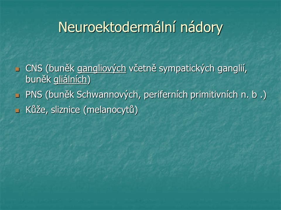 Neuroektodermální nádory CNS (buněk gangliových včetně sympatických ganglií, buněk gliálních) CNS (buněk gangliových včetně sympatických ganglií, buně