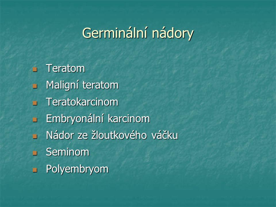 Germinální nádory Teratom Teratom Maligní teratom Maligní teratom Teratokarcinom Teratokarcinom Embryonální karcinom Embryonální karcinom Nádor ze žlo