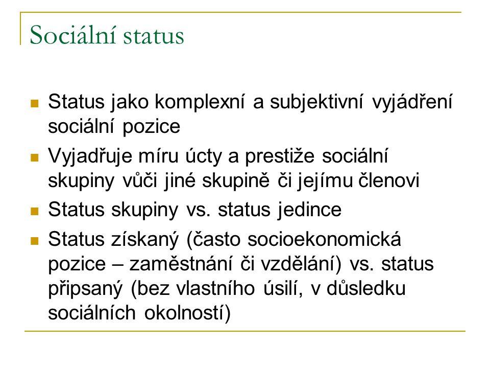 Sociální status Status jako komplexní a subjektivní vyjádření sociální pozice Vyjadřuje míru úcty a prestiže sociální skupiny vůči jiné skupině či jej