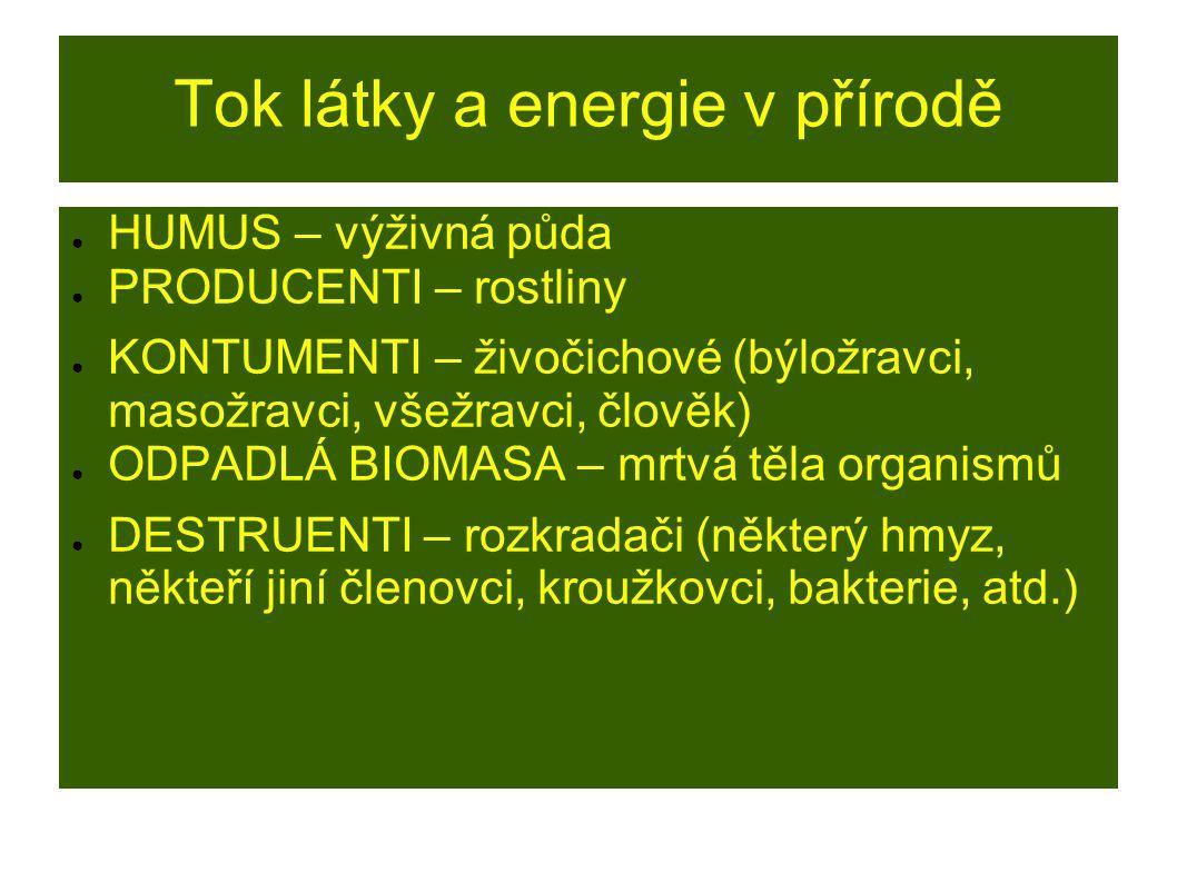 Tok látky a energie v přírodě ● HUMUS – výživná půda ● PRODUCENTI – rostliny ● KONTUMENTI – živočichové (býložravci, masožravci, všežravci, člověk) ●