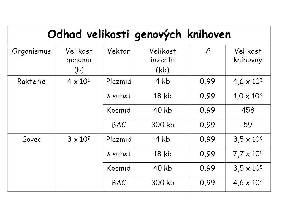 Odhad velikosti genových knihoven OrganismusVelikost genomu (b) VektorVelikost inzertu (kb) PVelikost knihovny Bakterie4 x 10 6 Plazmid4 kb0,994,6 x 1