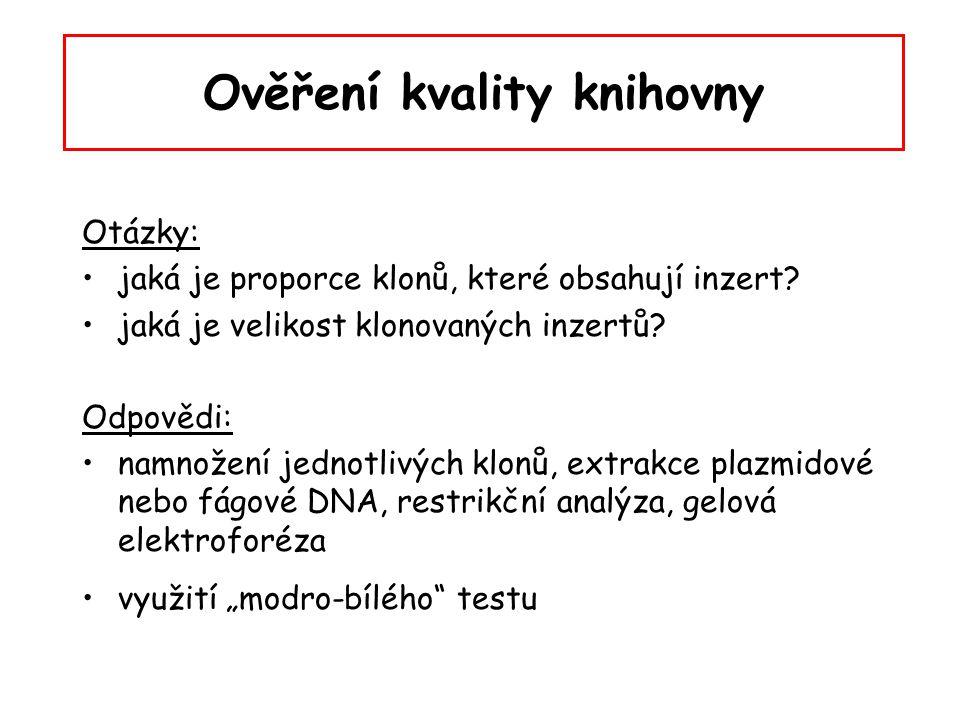 Ověření kvality knihovny Otázky: jaká je proporce klonů, které obsahují inzert? jaká je velikost klonovaných inzertů? Odpovědi: namnožení jednotlivých