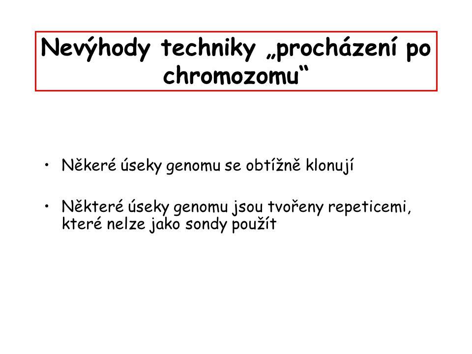"""Nevýhody techniky """"procházení po chromozomu"""" Někeré úseky genomu se obtížně klonují Některé úseky genomu jsou tvořeny repeticemi, které nelze jako son"""