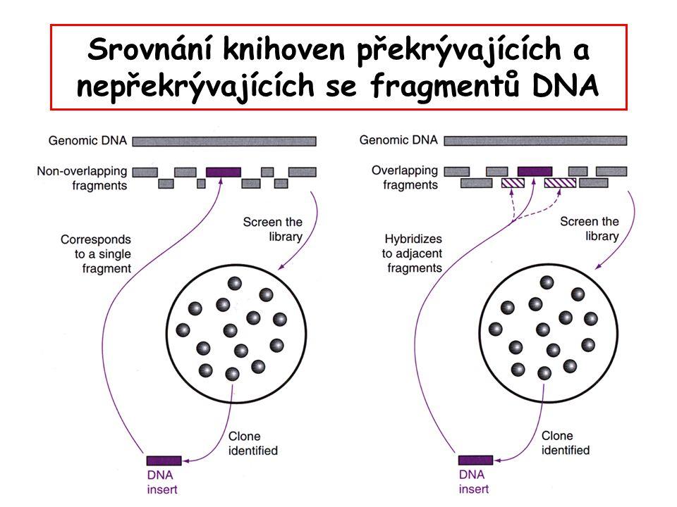 Srovnání knihoven překrývajících a nepřekrývajících se fragmentů DNA