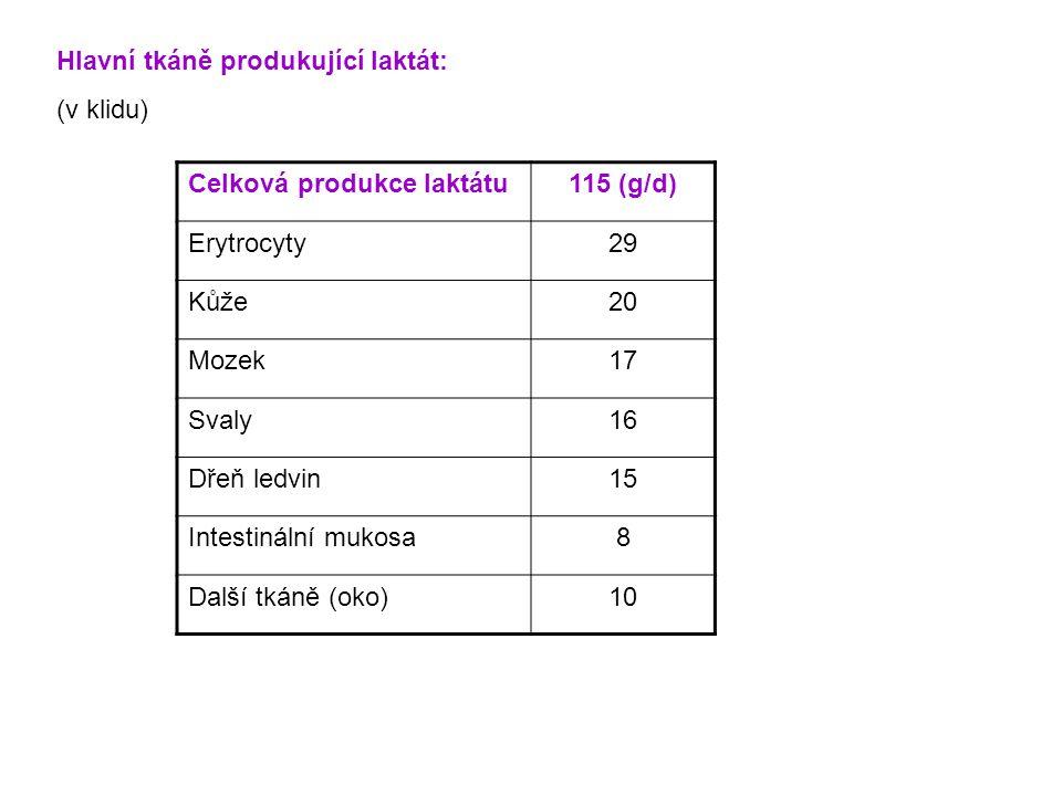 Celková produkce laktátu115 (g/d) Erytrocyty29 Kůže20 Mozek17 Svaly16 Dřeň ledvin15 Intestinální mukosa8 Další tkáně (oko)10 Hlavní tkáně produkující laktát: (v klidu)