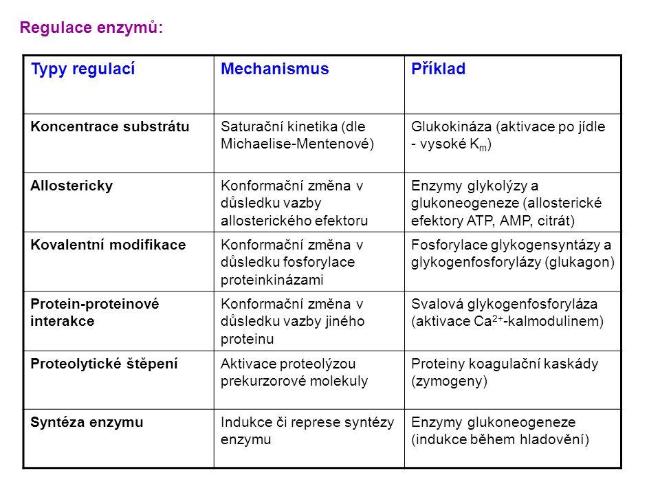Typy regulacíMechanismusPříklad Koncentrace substrátuSaturační kinetika (dle Michaelise-Mentenové) Glukokináza (aktivace po jídle - vysoké K m ) Allos