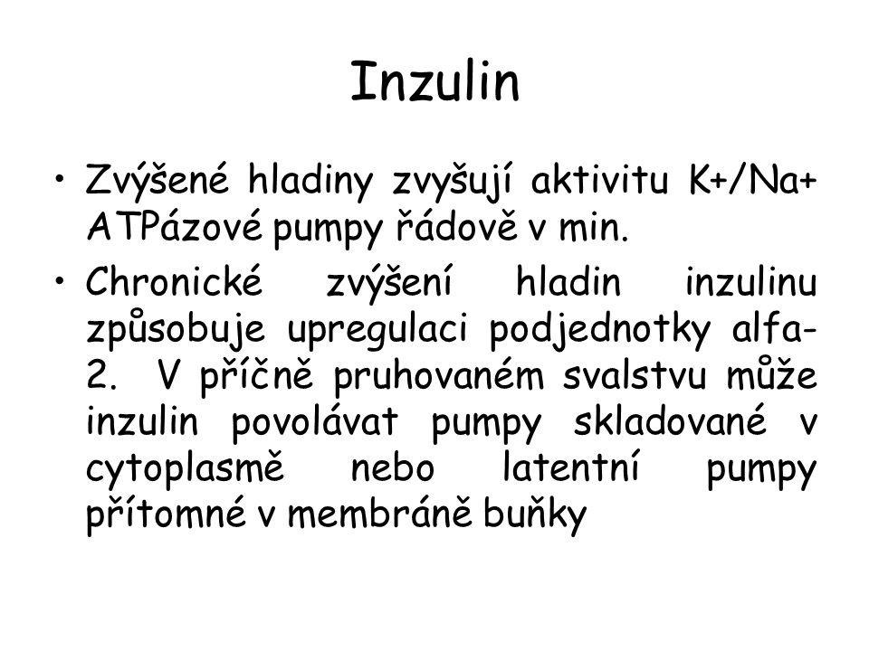Inzulin Zvýšené hladiny zvyšují aktivitu K+/Na+ ATPázové pumpy řádově v min. Chronické zvýšení hladin inzulinu způsobuje upregulaci podjednotky alfa-