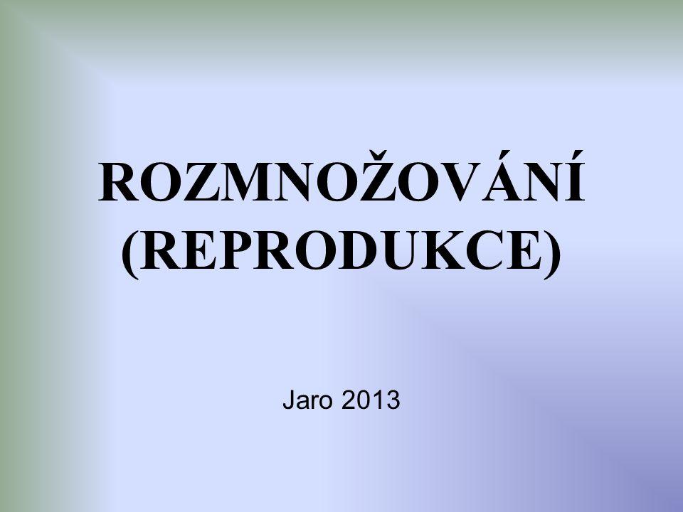 ROZMNOŽOVÁNÍ (REPRODUKCE) Jaro 2013