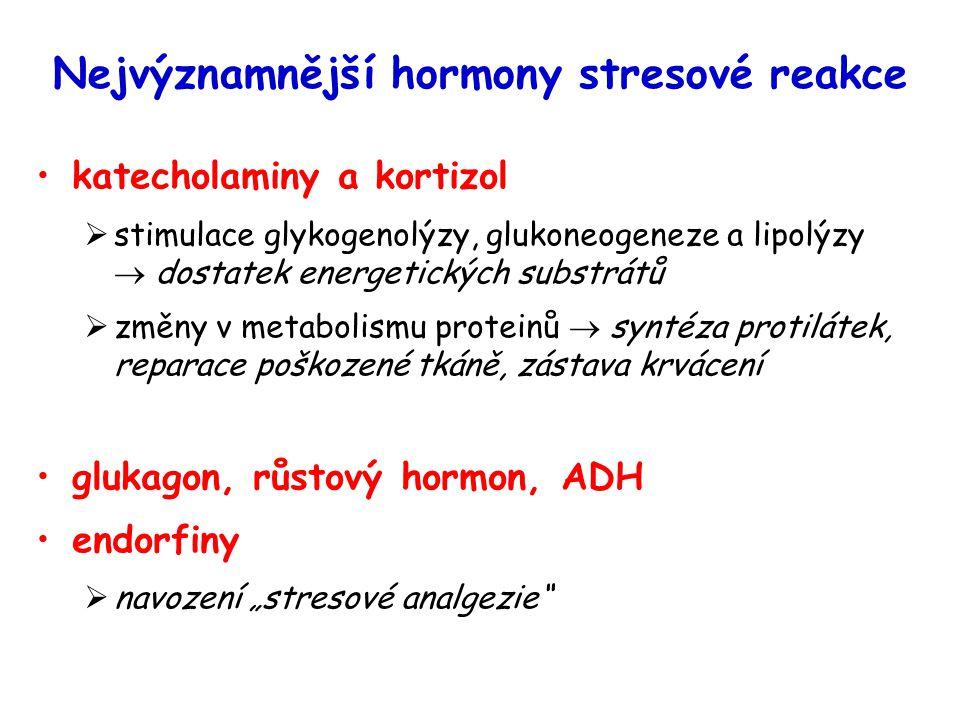 Nejvýznamnější hormony stresové reakce katecholaminy a kortizol  stimulace glykogenolýzy, glukoneogeneze a lipolýzy  dostatek energetických substrát