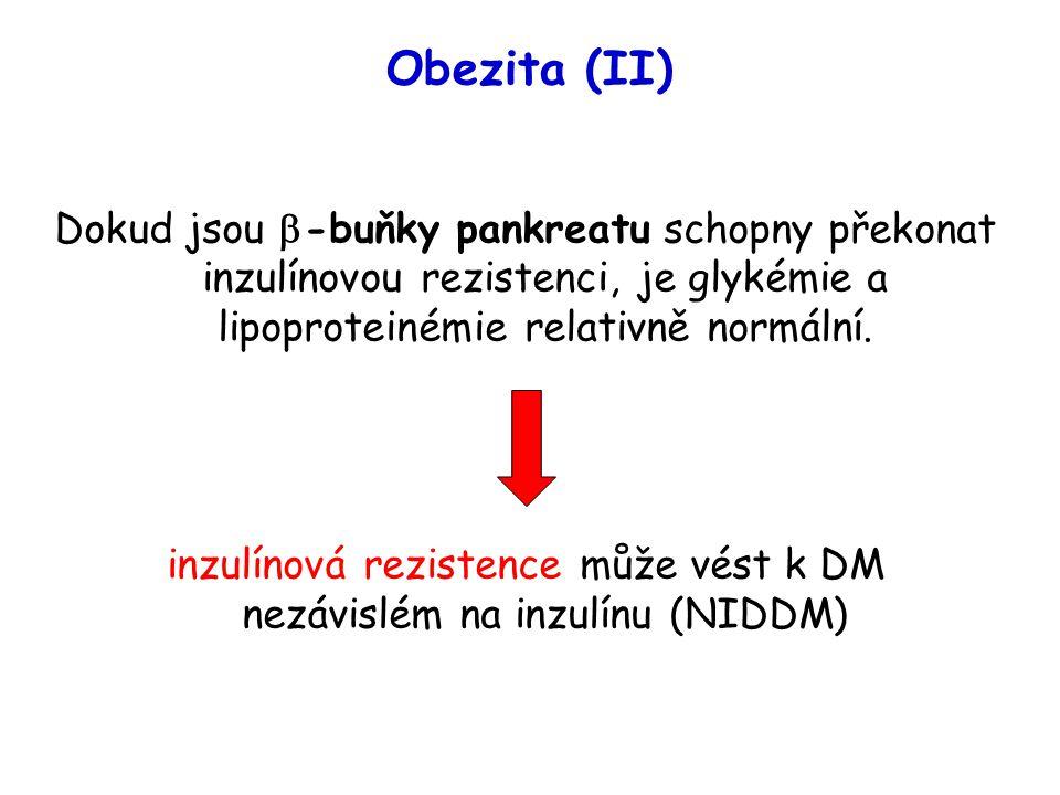 Obezita (II) Dokud jsou  -buňky pankreatu schopny překonat inzulínovou rezistenci, je glykémie a lipoproteinémie relativně normální. inzulínová rezis