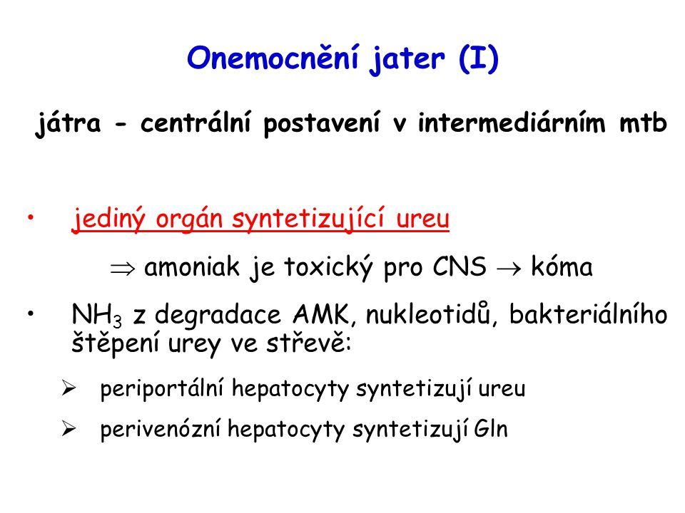 Onemocnění jater (I) játra - centrální postavení v intermediárním mtb jediný orgán syntetizující ureu  amoniak je toxický pro CNS  kóma NH 3 z degra