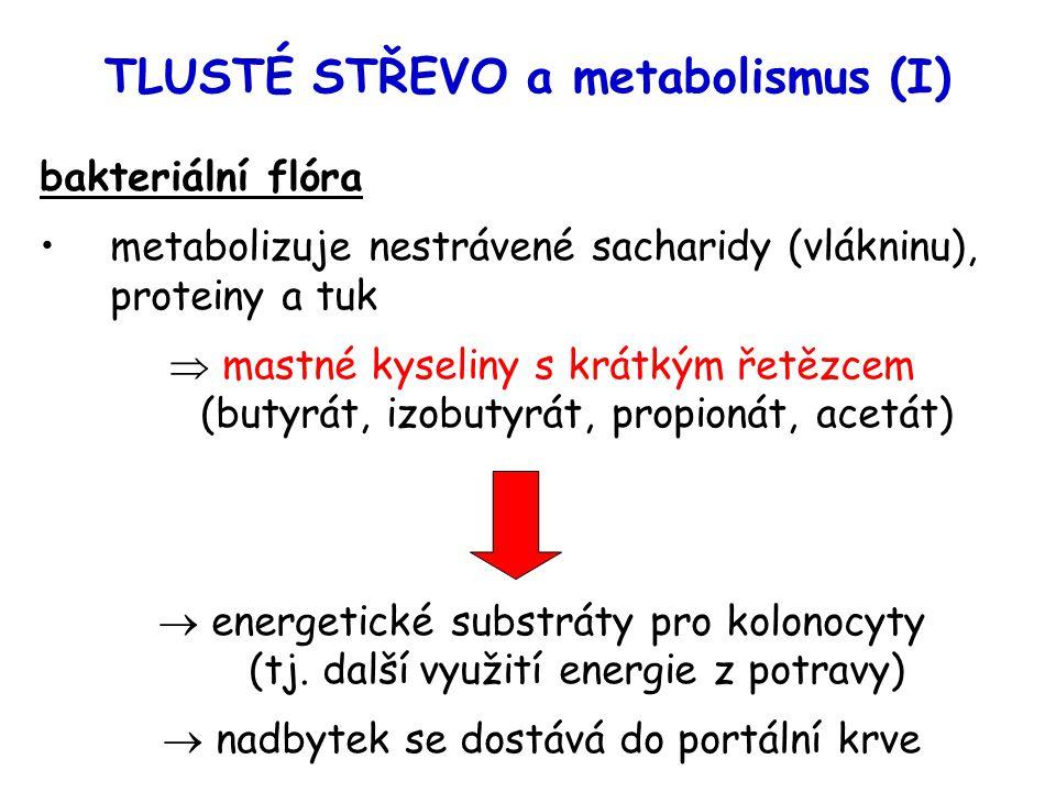 TLUSTÉ STŘEVO a metabolismus (I) bakteriální flóra metabolizuje nestrávené sacharidy (vlákninu), proteiny a tuk  mastné kyseliny s krátkým řetězcem (