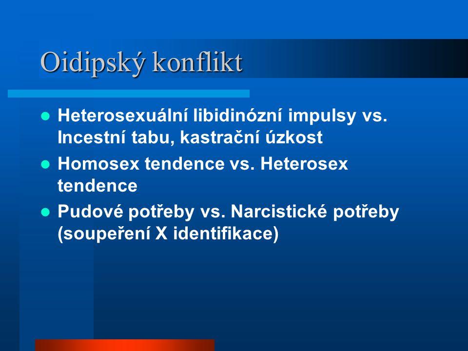 Oidipský konflikt Heterosexuální libidinózní impulsy vs. Incestní tabu, kastrační úzkost Homosex tendence vs. Heterosex tendence Pudové potřeby vs. Na