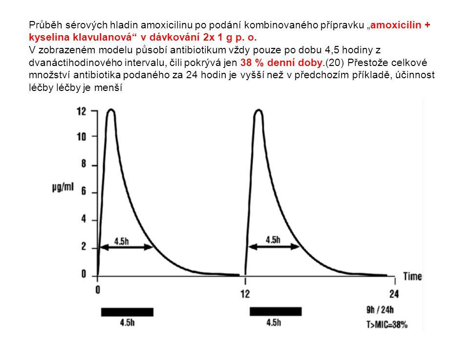 """Průběh sérových hladin amoxicilinu po podání kombinovaného přípravku """"amoxicilin + kyselina klavulanová"""" v dávkování 2x 1 g p. o. V zobrazeném modelu"""