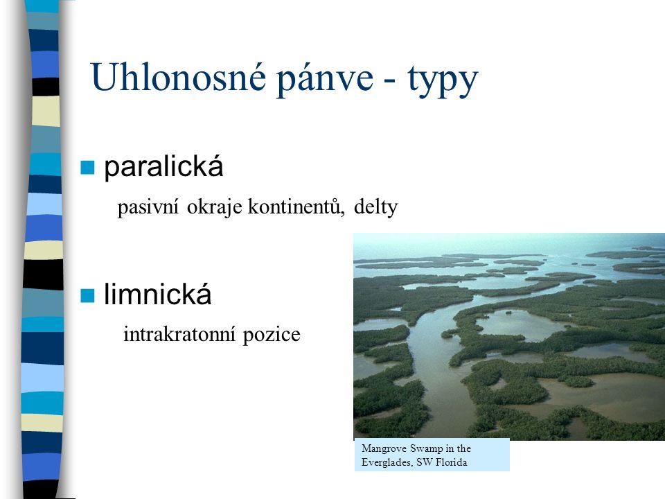 paralická limnická pasivní okraje kontinentů, delty intrakratonní pozice Mangrove Swamp in the Everglades, SW Florida Uhlonosné pánve - typy