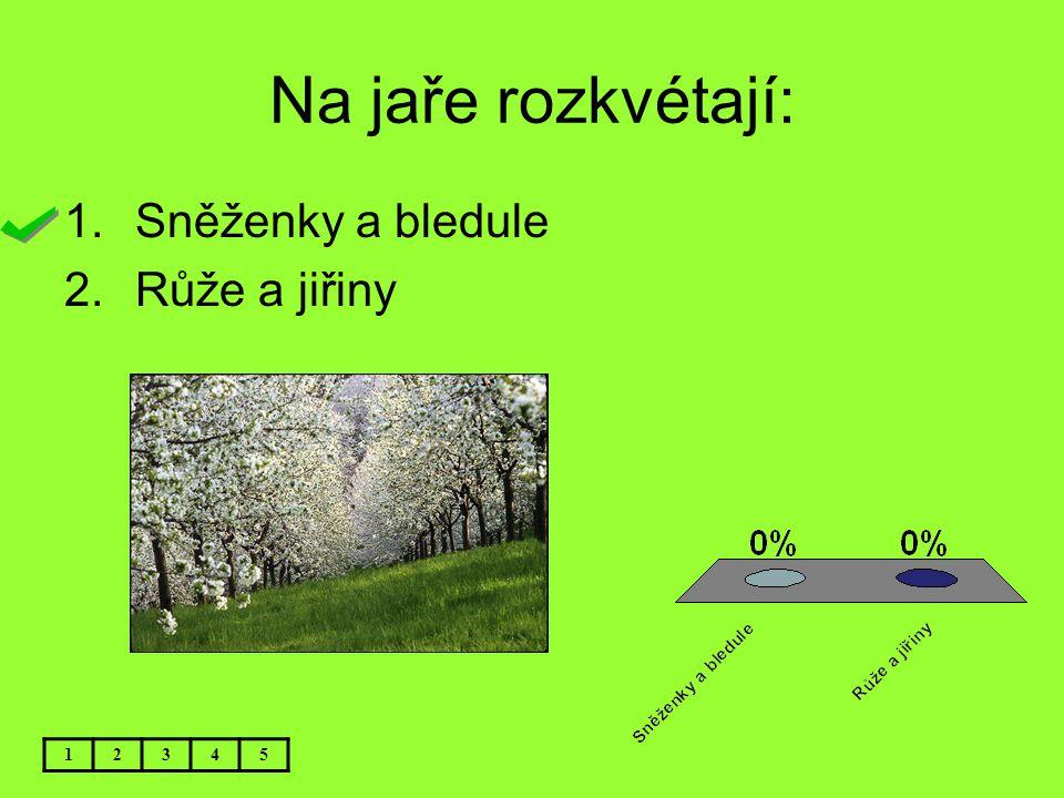 Na jaře rozkvétají: 12345 1.Sněženky a bledule 2.Růže a jiřiny