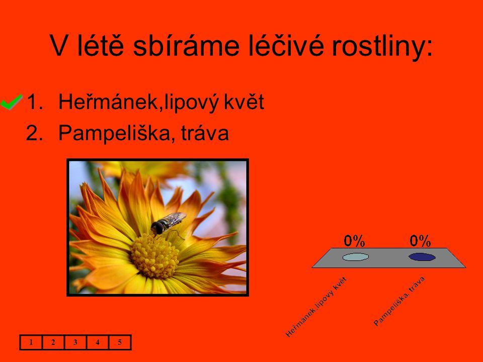 V létě sbíráme léčivé rostliny: 12345 1.Heřmánek,lipový květ 2.Pampeliška, tráva