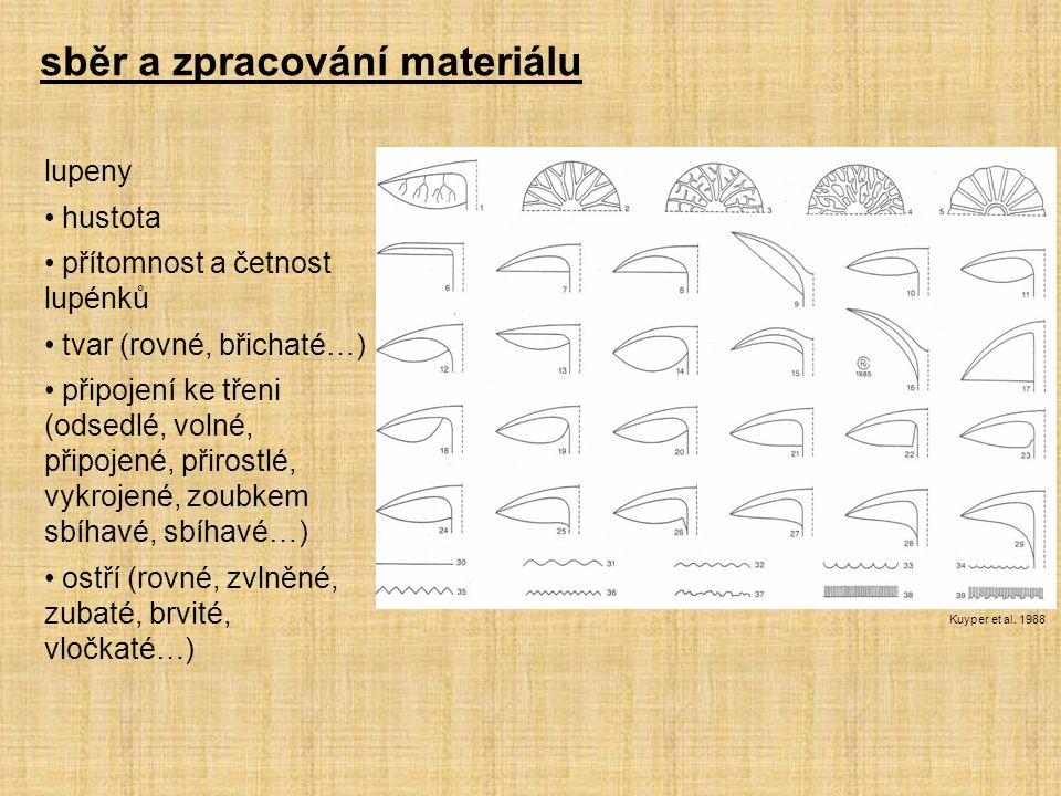 sběr a zpracování materiálu lupeny hustota přítomnost a četnost lupénků tvar (rovné, břichaté…) připojení ke třeni (odsedlé, volné, připojené, přirost