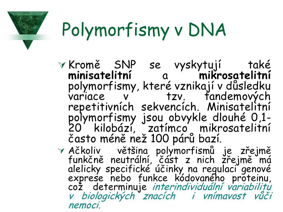 Polymorfismy v DNA  Kromě SNP se vyskytují také minisatelitní a mikrosatelitní polymorfismy, které vznikají v důsledku variace v tzv. tandemových rep