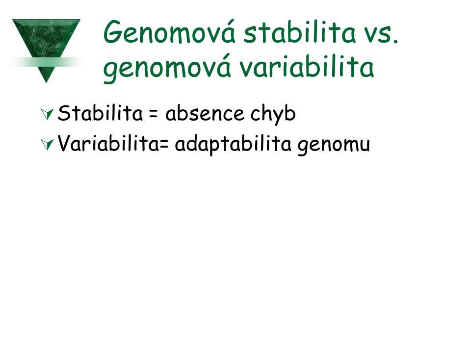 Genomová stabilita vs. genomová variabilita  Stabilita = absence chyb  Variabilita= adaptabilita genomu