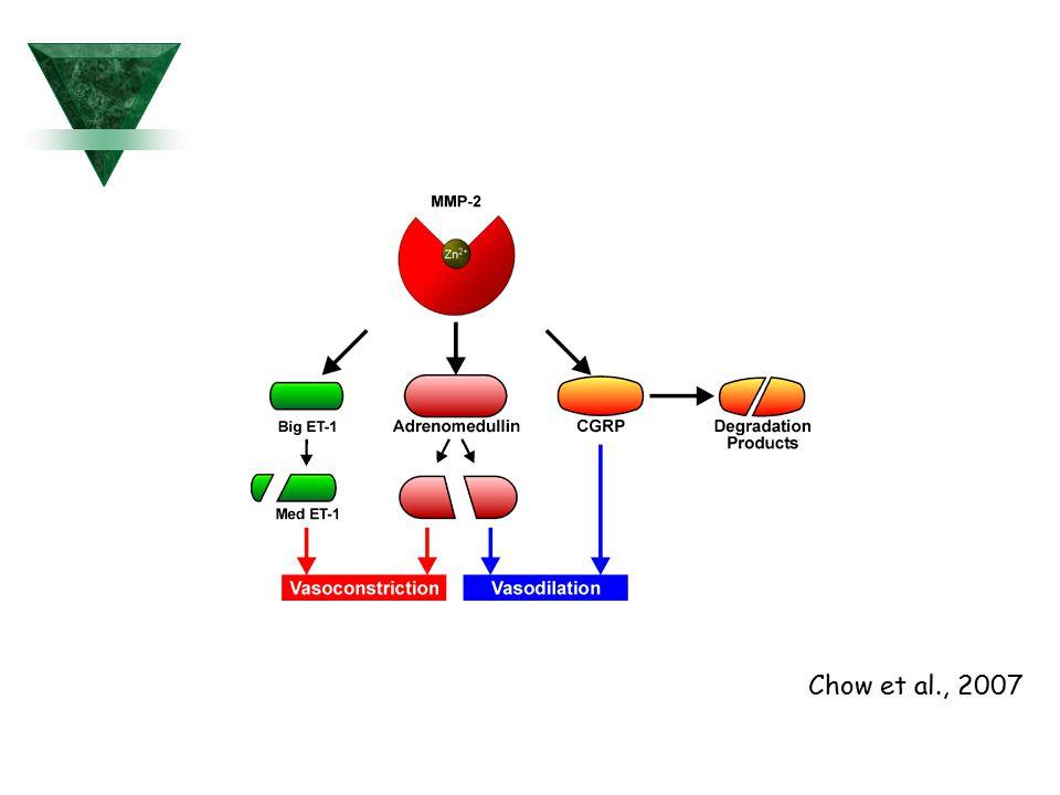 Chow et al., 2007